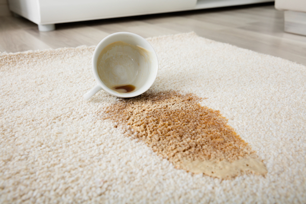 Looking for the best carpet cleaner to remove stains?